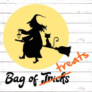 Witch on Broomstick - Trick Or Treat Bag