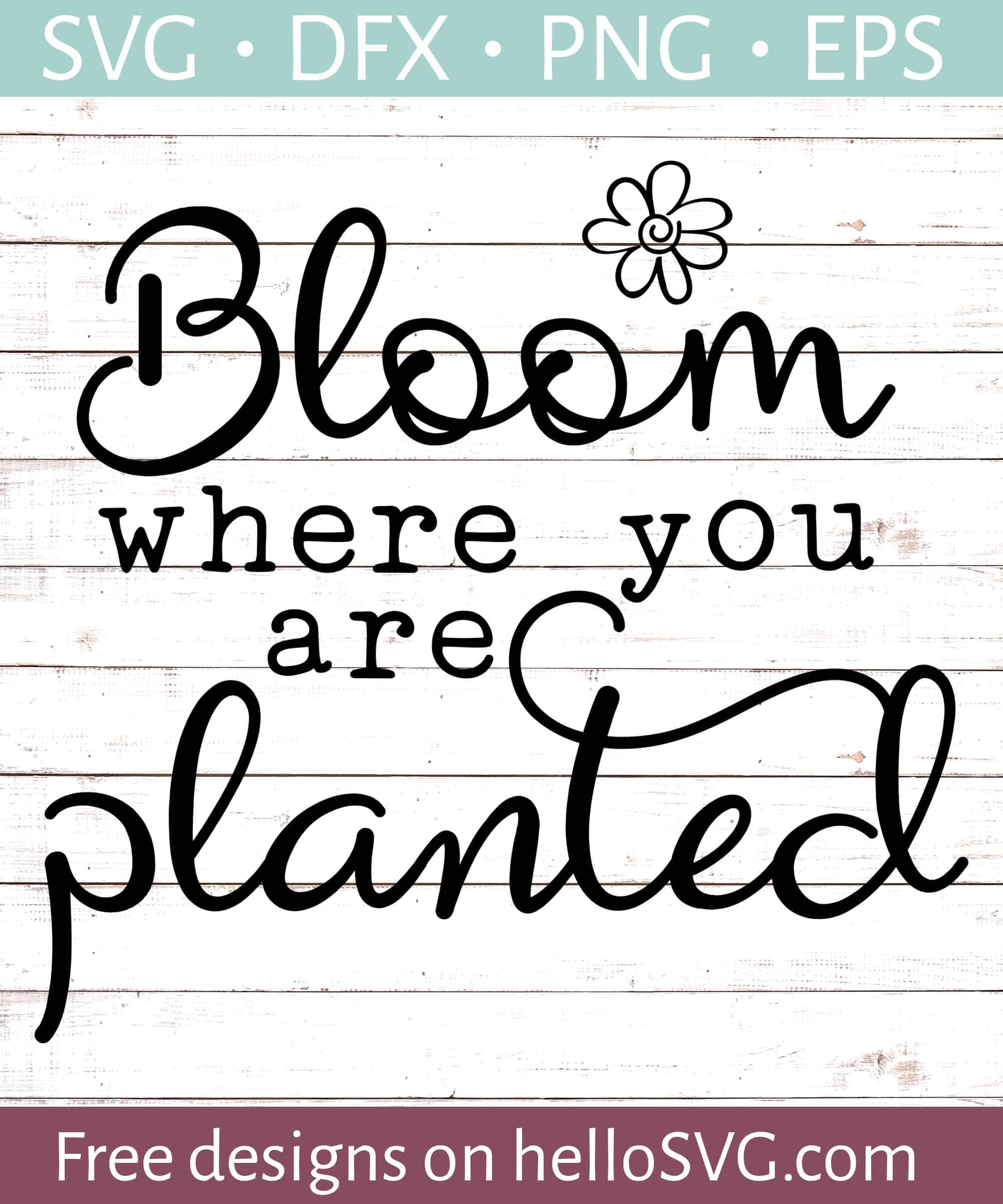 Bloom Where You Are Planted Svg Free Svg Files Hellosvg Com
