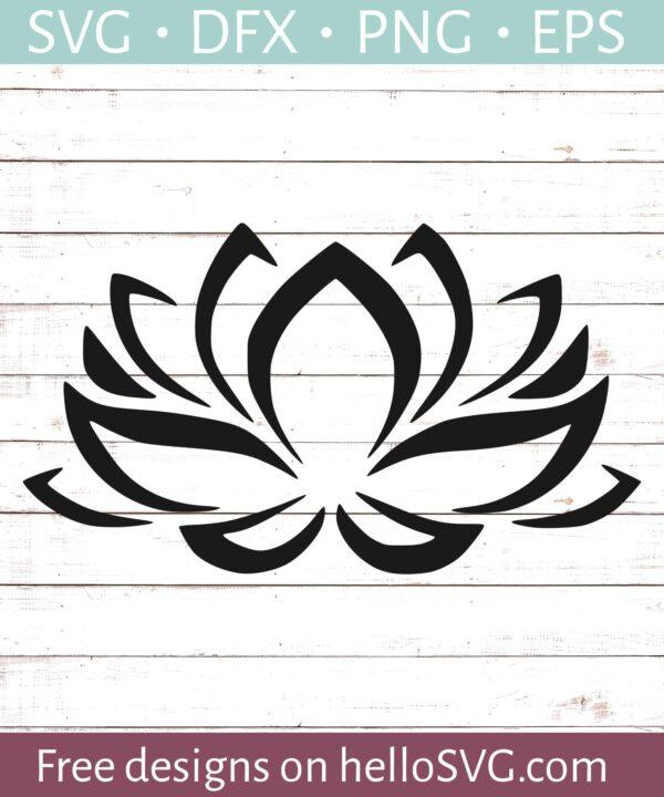Lotus Flower #1