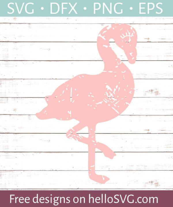 Flamingo - Distressed