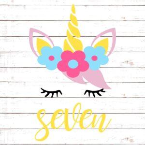Seventh Birthday with Unicorn #2