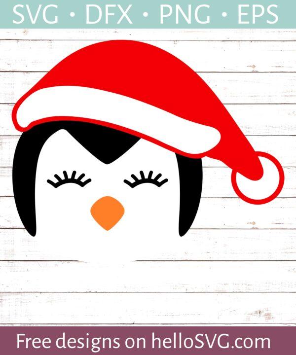 Penguin Face