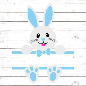 Easter Bunny Monogram For Boys #2